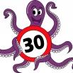 Octopusplan in Stedelijke basisschool de Gummi's