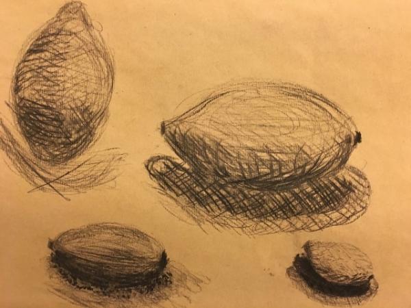 Tekenkunst  afbeelding 27