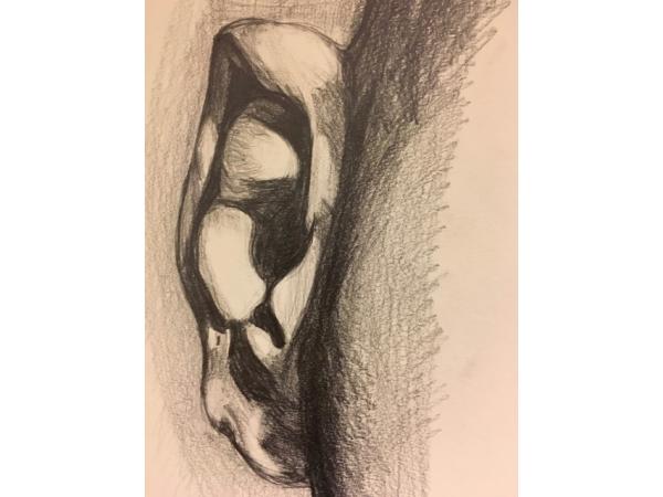 Tekenkunst  afbeelding 26