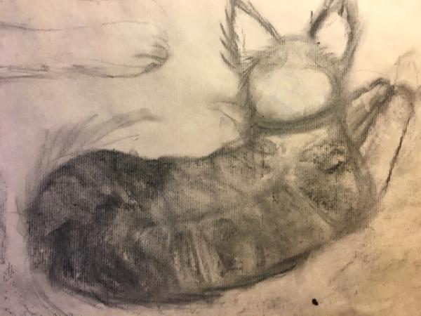 Tekenkunst  afbeelding 29