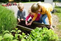 zaaien en planten