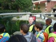 K1 kleuters in de Zoo