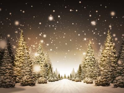 kerstbomen